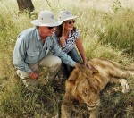Virginia Foster, Human Interest, Lion lovers