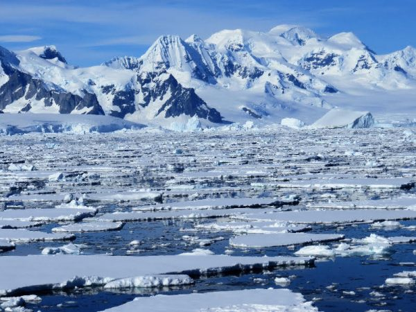 This image has an empty alt attribute; its file name is Restarick-Antartica.jpg